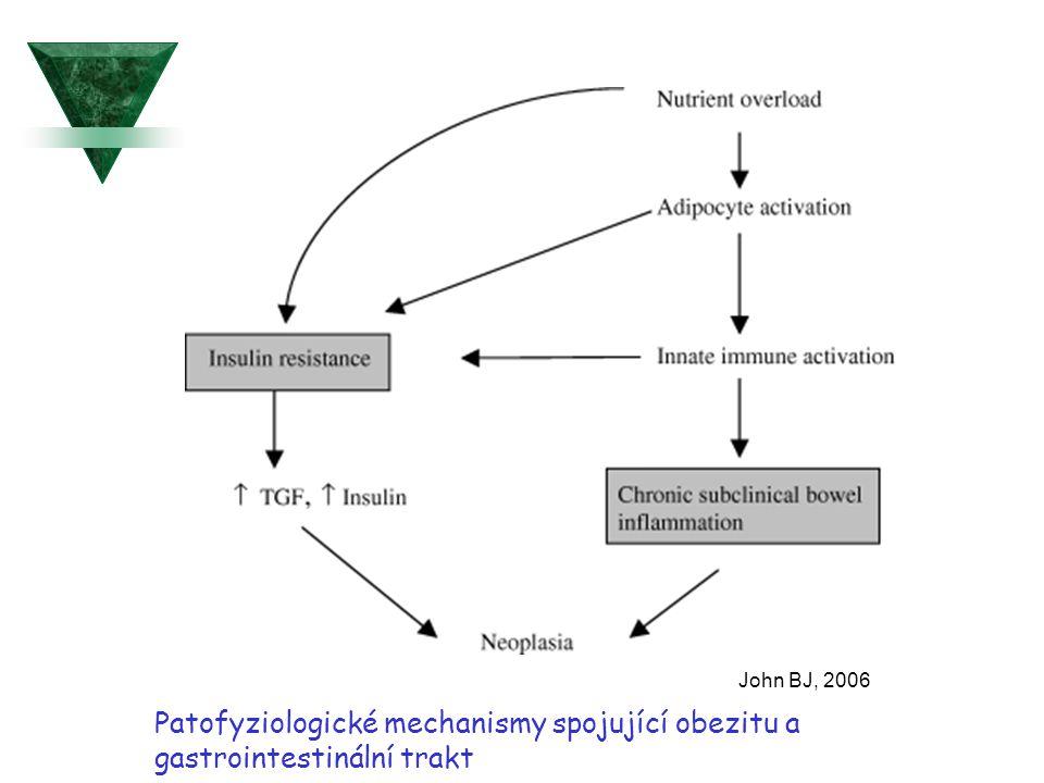 John BJ, 2006 Patofyziologické mechanismy spojující obezitu a gastrointestinální trakt