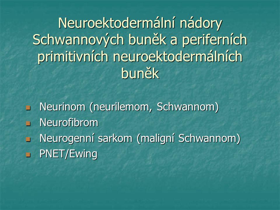 Neuroektodermální nádory Schwannových buněk a periferních primitivních neuroektodermálních buněk