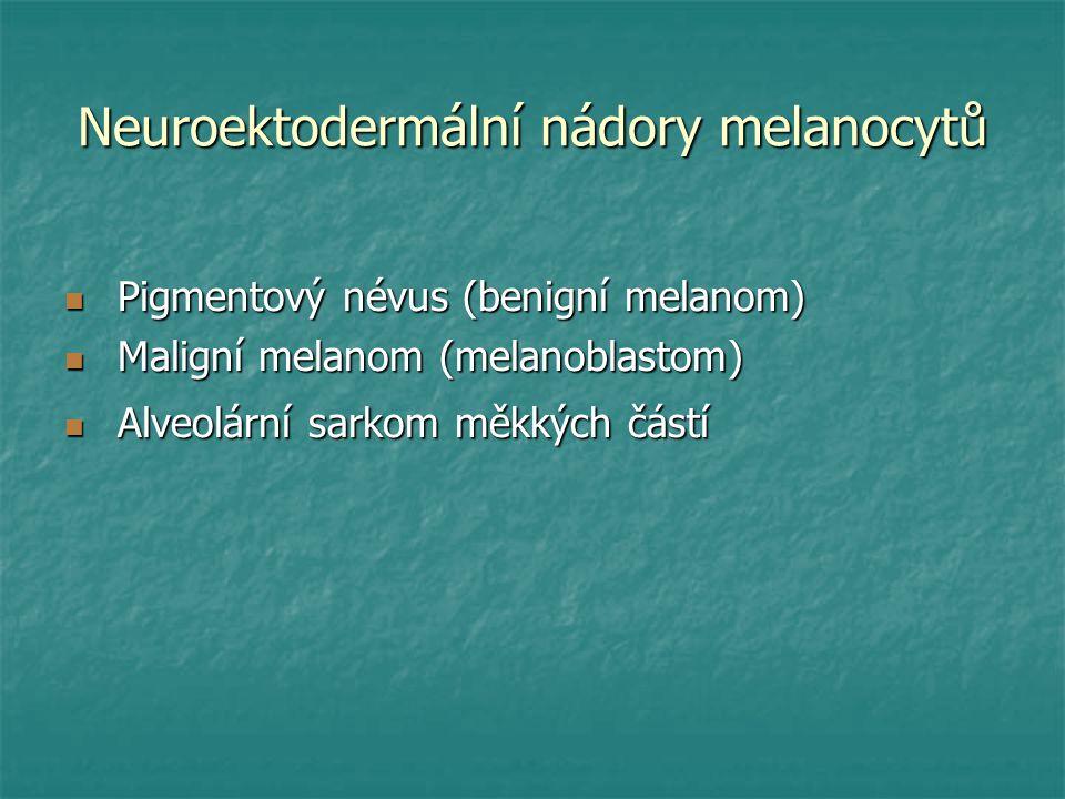 Neuroektodermální nádory melanocytů
