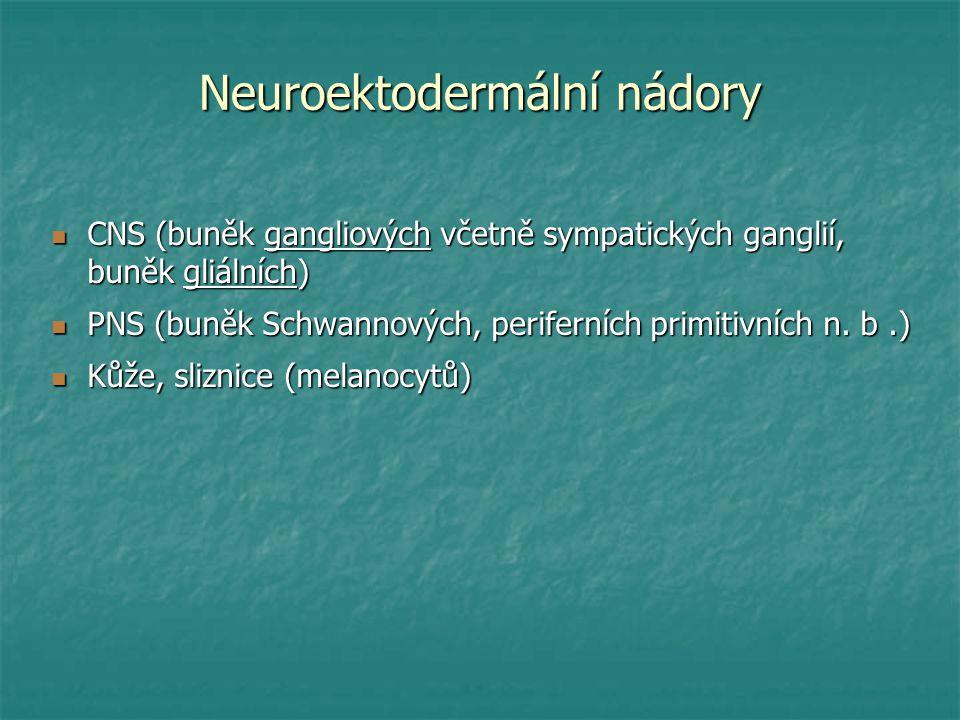 Neuroektodermální nádory