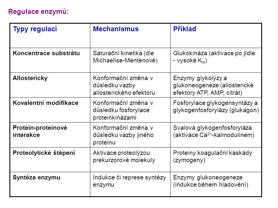 Regulace enzymů: Typy regulací Mechanismus Příklad