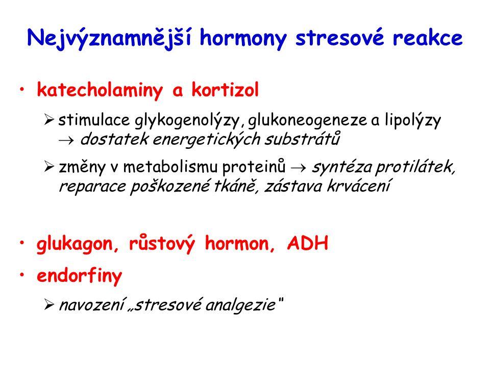 Nejvýznamnější hormony stresové reakce