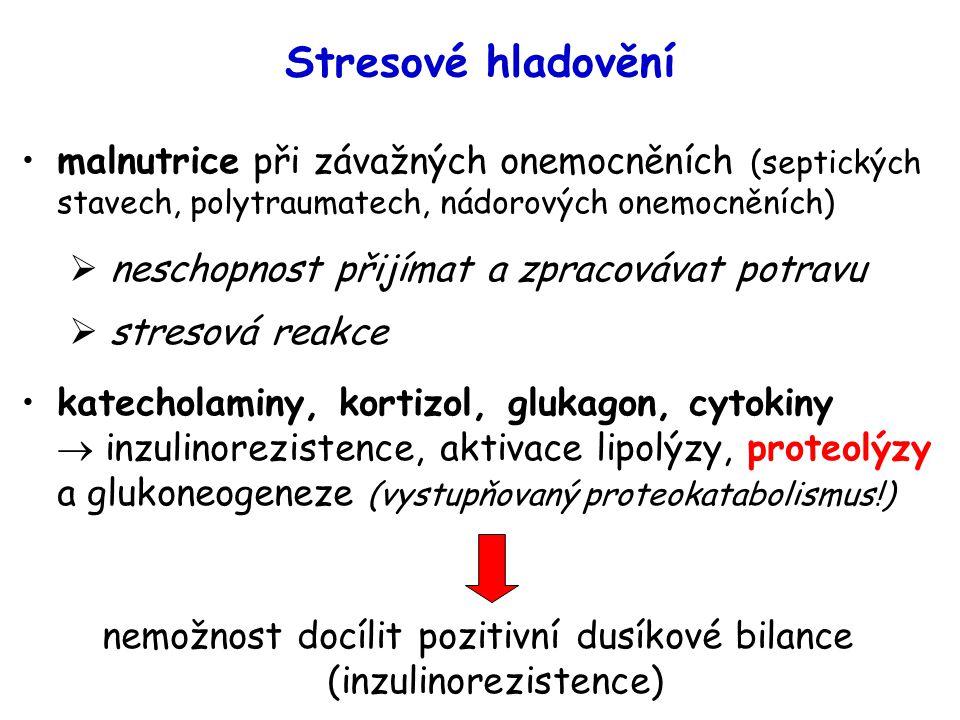 nemožnost docílit pozitivní dusíkové bilance (inzulinorezistence)
