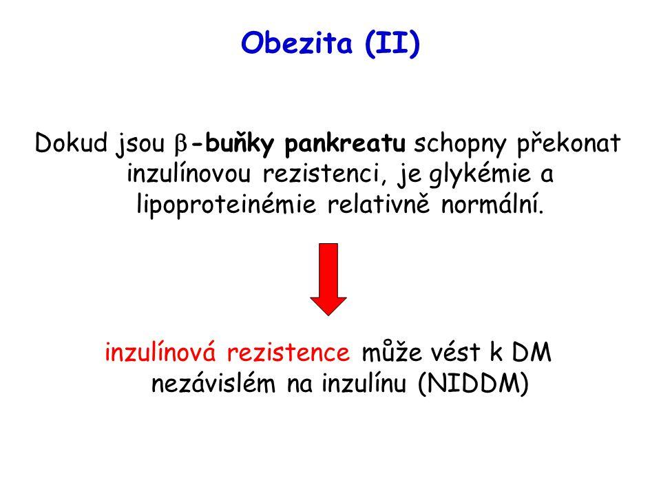 inzulínová rezistence může vést k DM nezávislém na inzulínu (NIDDM)