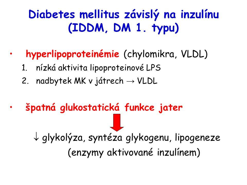 Diabetes mellitus závislý na inzulínu (IDDM, DM 1. typu)