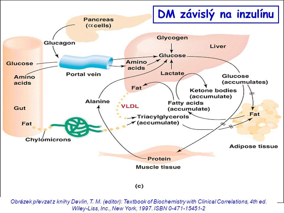 DM závislý na inzulínu