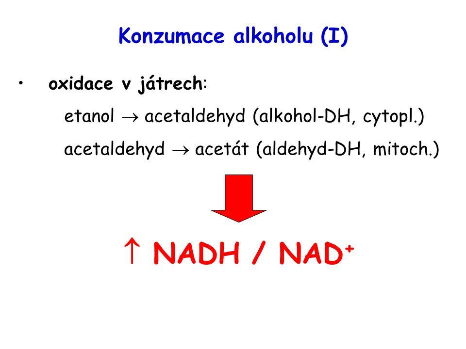 Konzumace alkoholu (I)