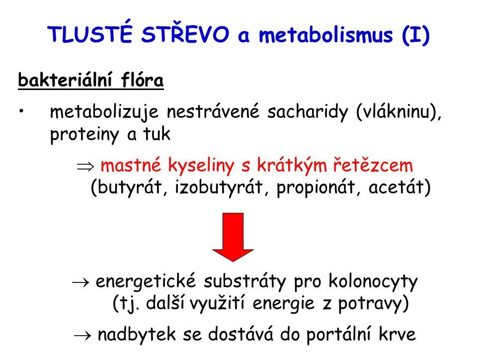 TLUSTÉ STŘEVO a metabolismus (I)