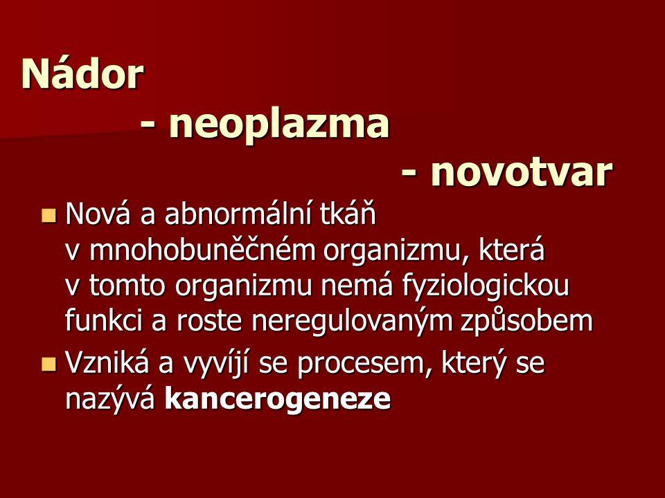 Nádor - neoplazma - novotvar