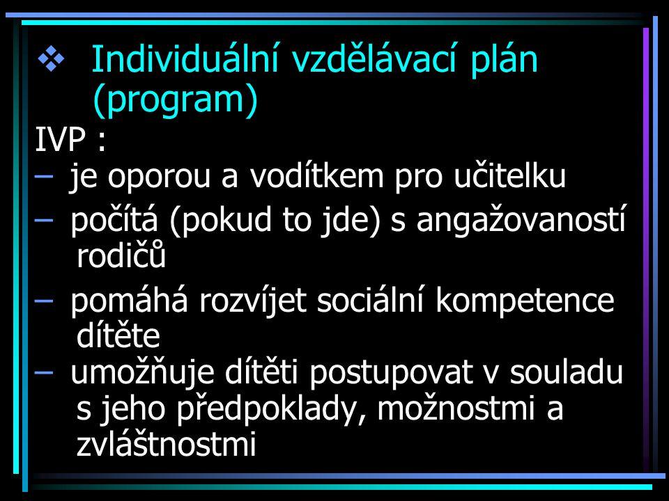 Individuální vzdělávací plán (program)