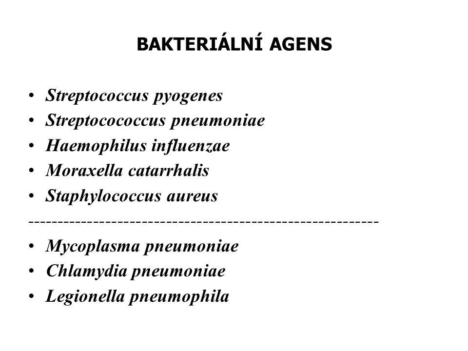 BAKTERIÁLNÍ AGENS Streptococcus pyogenes. Streptocococcus pneumoniae. Haemophilus influenzae. Moraxella catarrhalis.