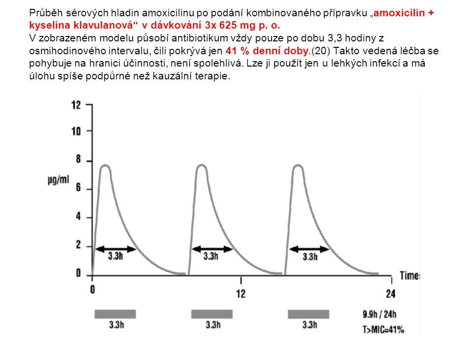 """Průběh sérových hladin amoxicilinu po podání kombinovaného přípravku """"amoxicilin + kyselina klavulanová v dávkování 3x 625 mg p."""
