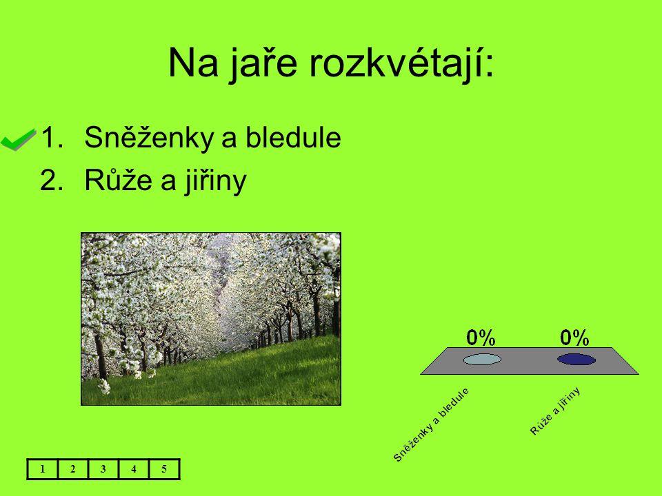 Na jaře rozkvétají: Sněženky a bledule Růže a jiřiny 1 2 3 4 5
