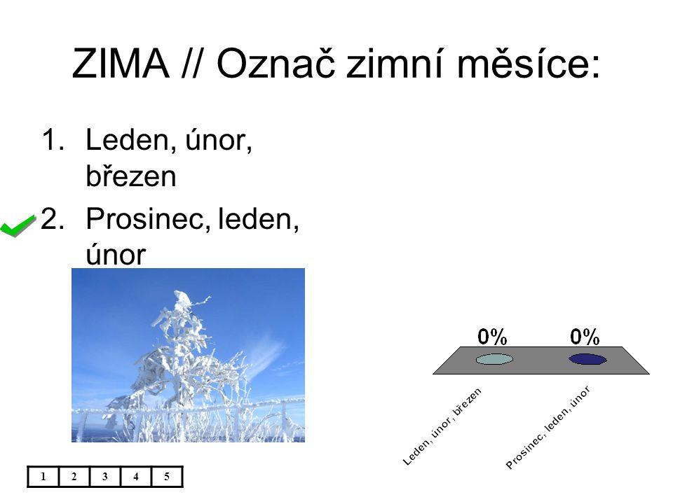 ZIMA // Označ zimní měsíce:
