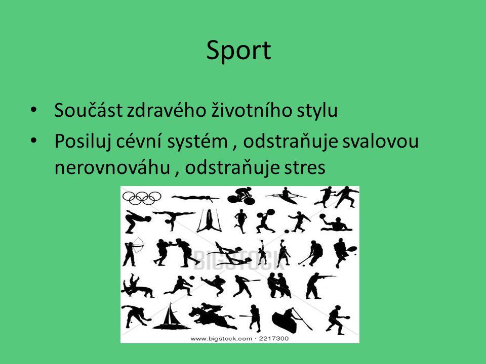 Sport Součást zdravého životního stylu