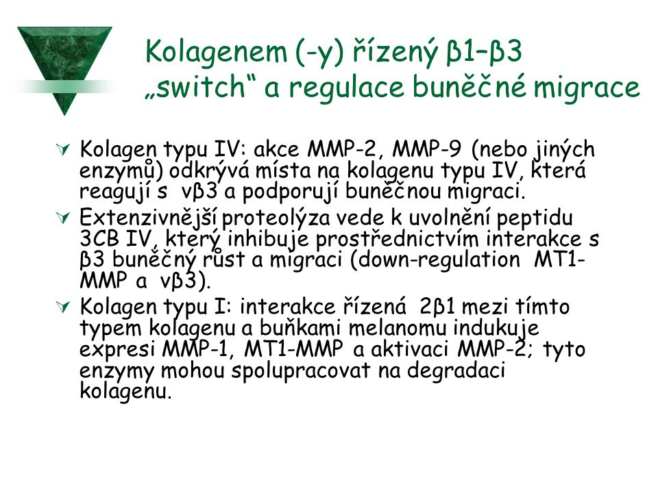 """Kolagenem (-y) řízený β1–β3 """"switch a regulace buněčné migrace"""