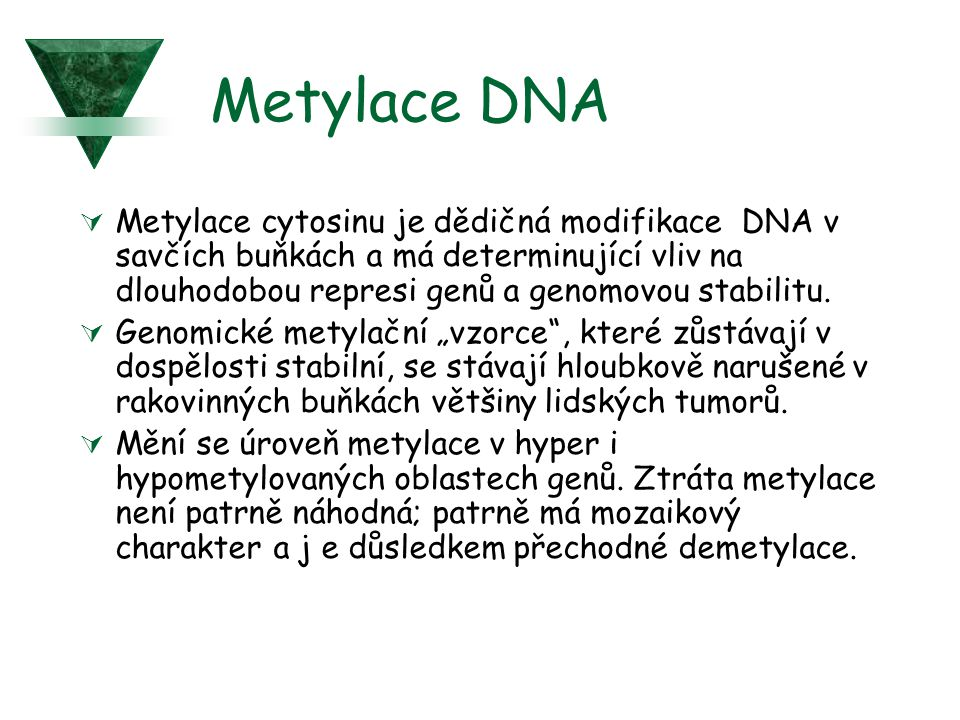 Metylace DNA