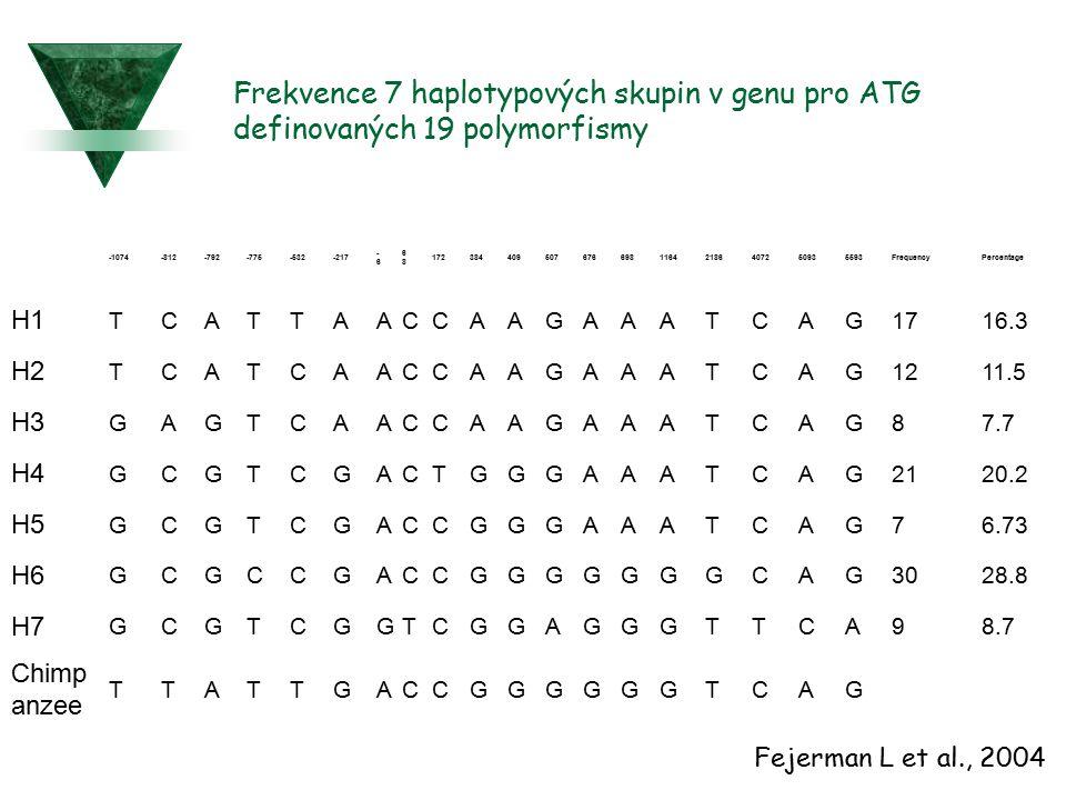 Frekvence 7 haplotypových skupin v genu pro ATG definovaných 19 polymorfismy
