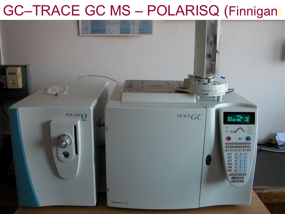 GC–TRACE GC MS – POLARISQ (Finnigan)