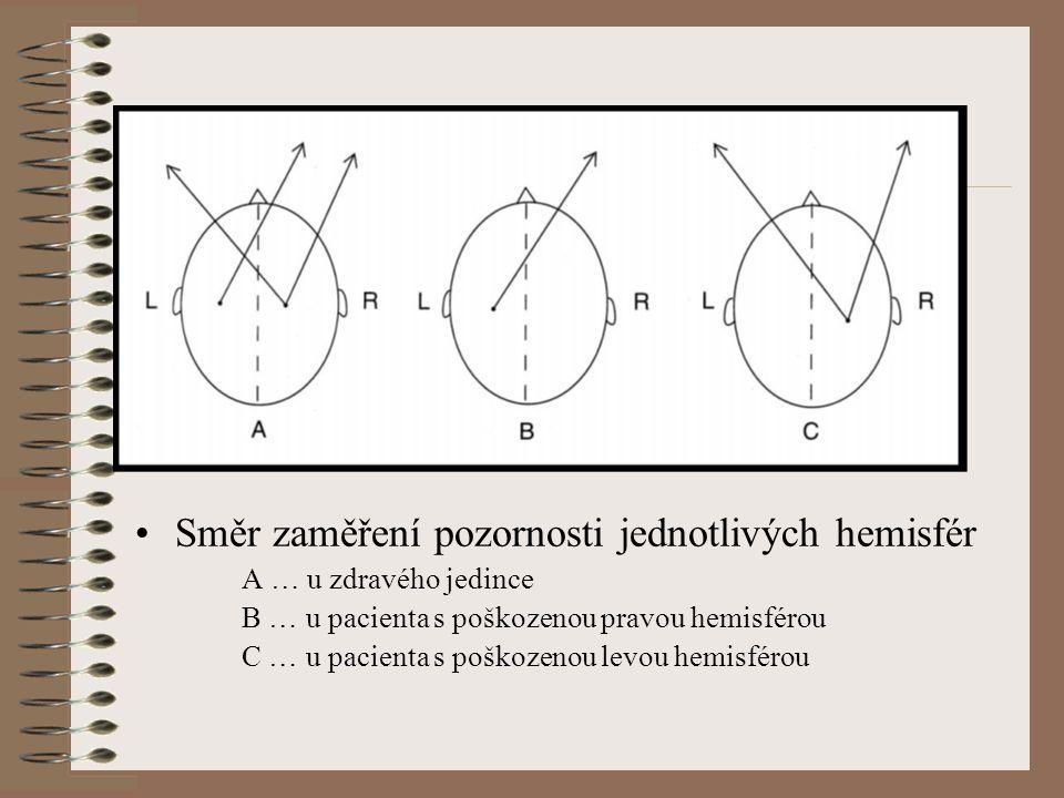Směr zaměření pozornosti jednotlivých hemisfér