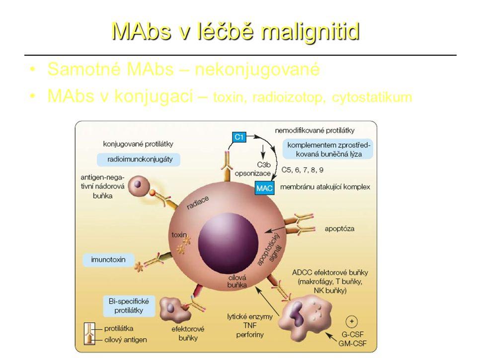 MAbs v léčbě malignitid