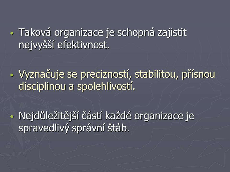 Taková organizace je schopná zajistit nejvyšší efektivnost.