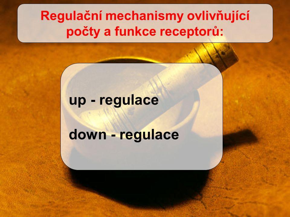 Regulační mechanismy ovlivňující počty a funkce receptorů: