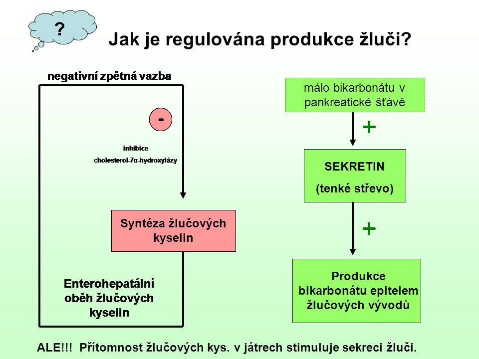 + Jak je regulována produkce žluči -