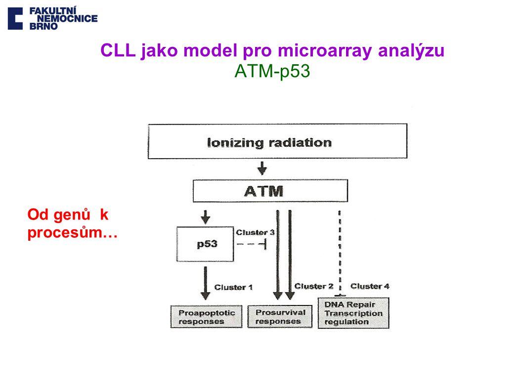 CLL jako model pro microarray analýzu ATM-p53