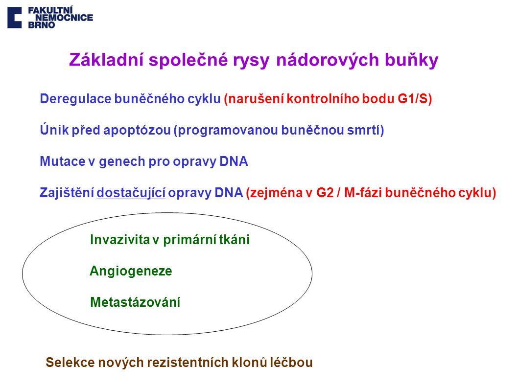 Základní společné rysy nádorových buňky