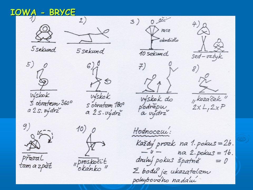 IOWA - BRYCE