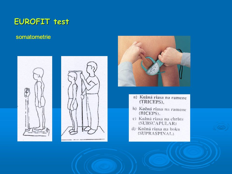 EUROFIT test somatometrie