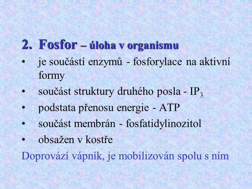 Fosfor – úloha v organismu