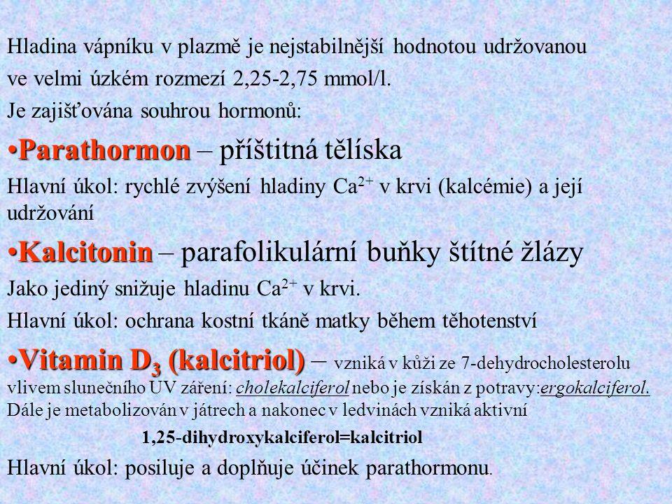 Parathormon – příštitná tělíska