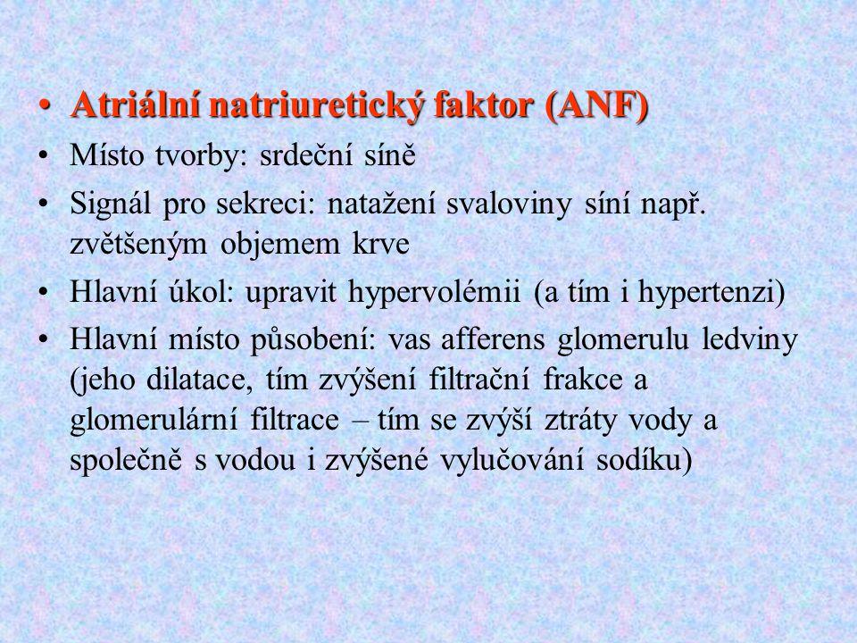 Atriální natriuretický faktor (ANF)