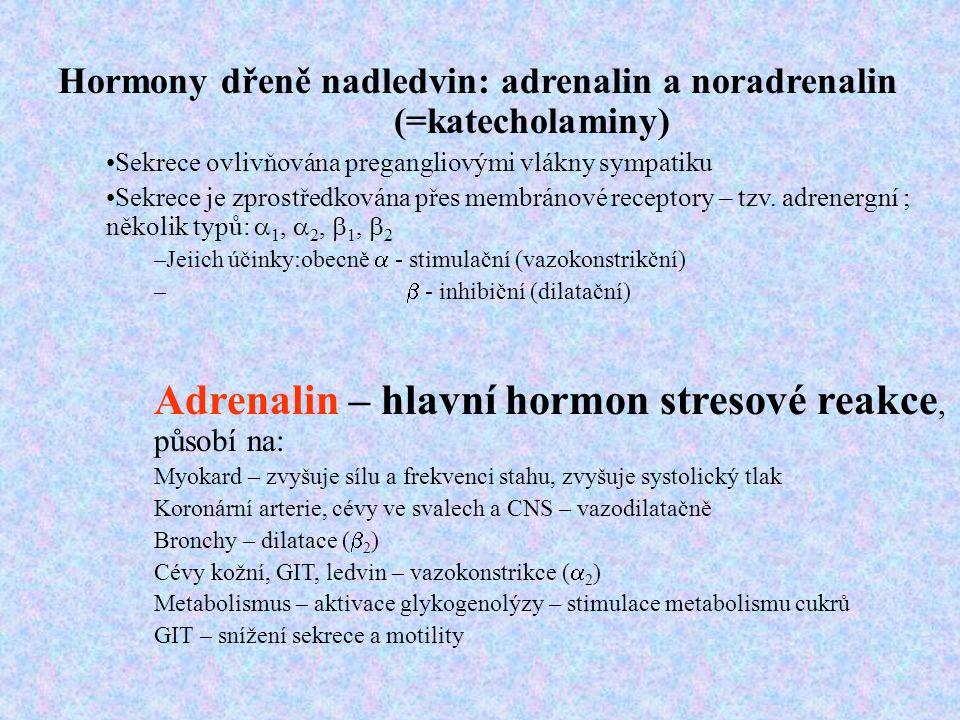 Adrenalin – hlavní hormon stresové reakce, působí na: