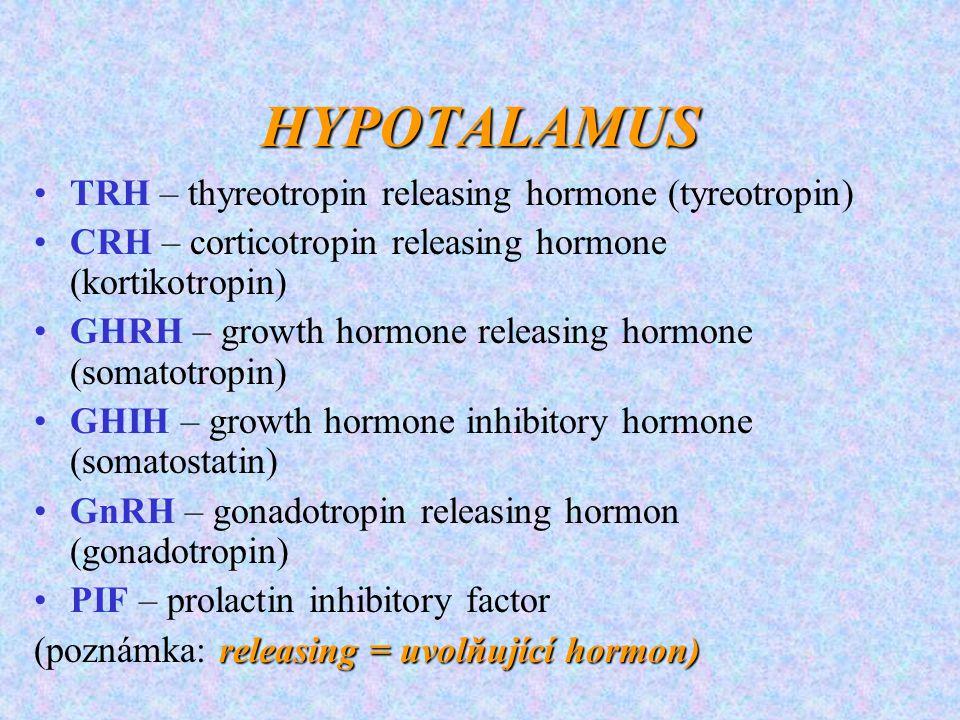 HYPOTALAMUS TRH – thyreotropin releasing hormone (tyreotropin)