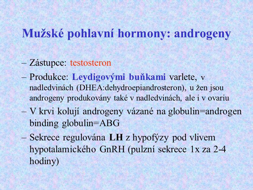 Mužské pohlavní hormony: androgeny