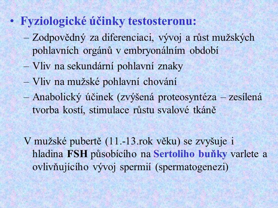 Fyziologické účinky testosteronu:
