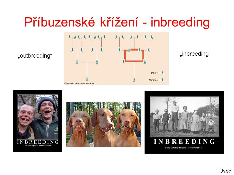 Příbuzenské křížení - inbreeding