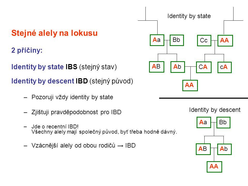 Stejné alely na lokusu 2 příčiny: Identity by state IBS (stejný stav)