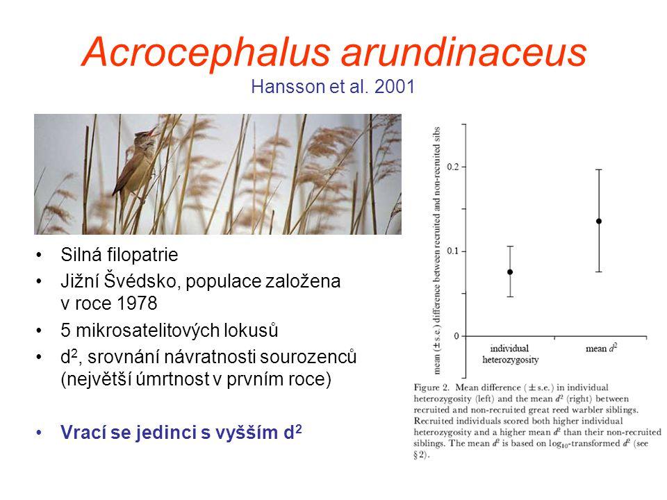 Acrocephalus arundinaceus Hansson et al. 2001