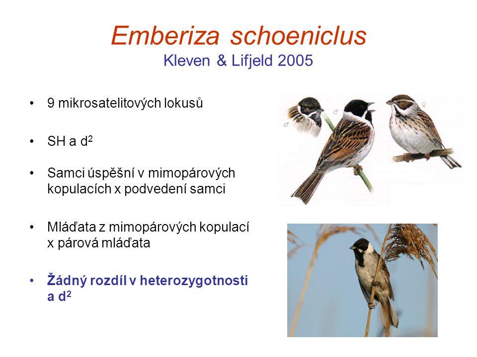 Emberiza schoeniclus Kleven & Lifjeld 2005