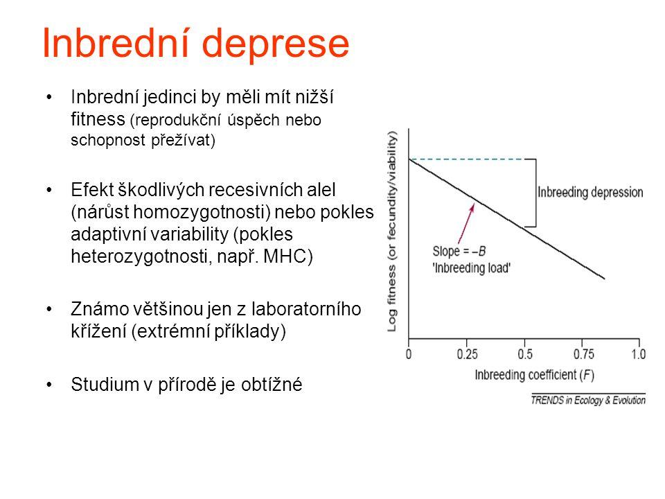 Inbrední deprese Inbrední jedinci by měli mít nižší fitness (reprodukční úspěch nebo schopnost přežívat)