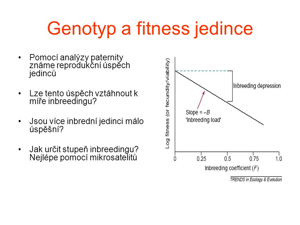 Genotyp a fitness jedince