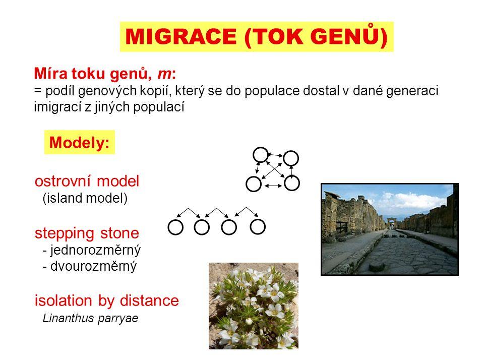 MIGRACE (TOK GENŮ) Míra toku genů, m: Modely: