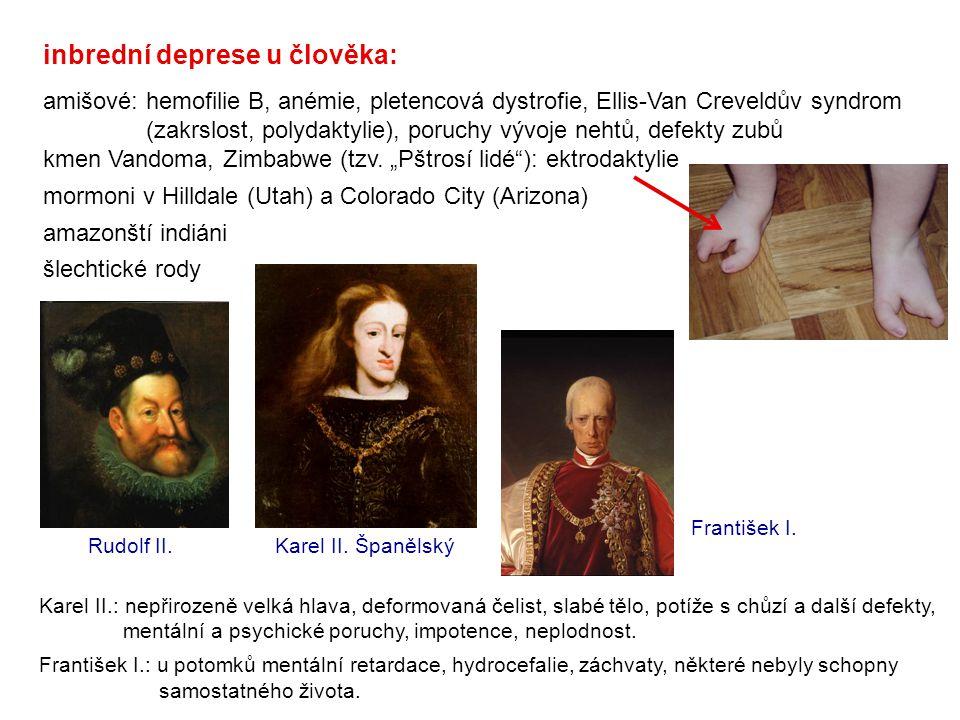 inbrední deprese u člověka: