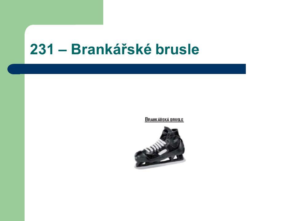 231 – Brankářské brusle
