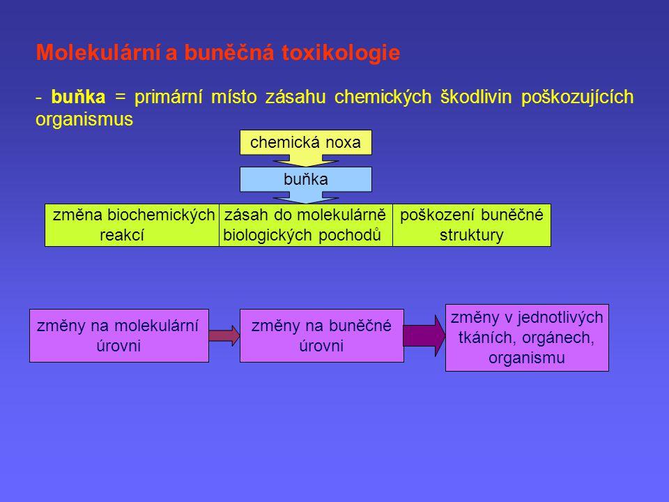 Molekulární a buněčná toxikologie