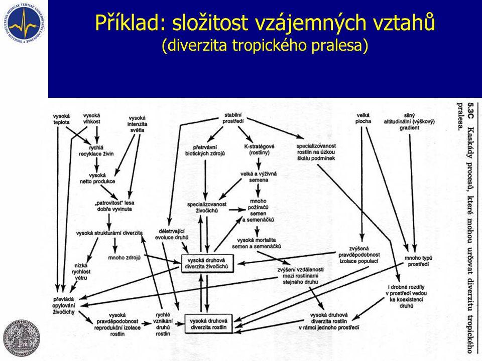 Příklad: složitost vzájemných vztahů (diverzita tropického pralesa)